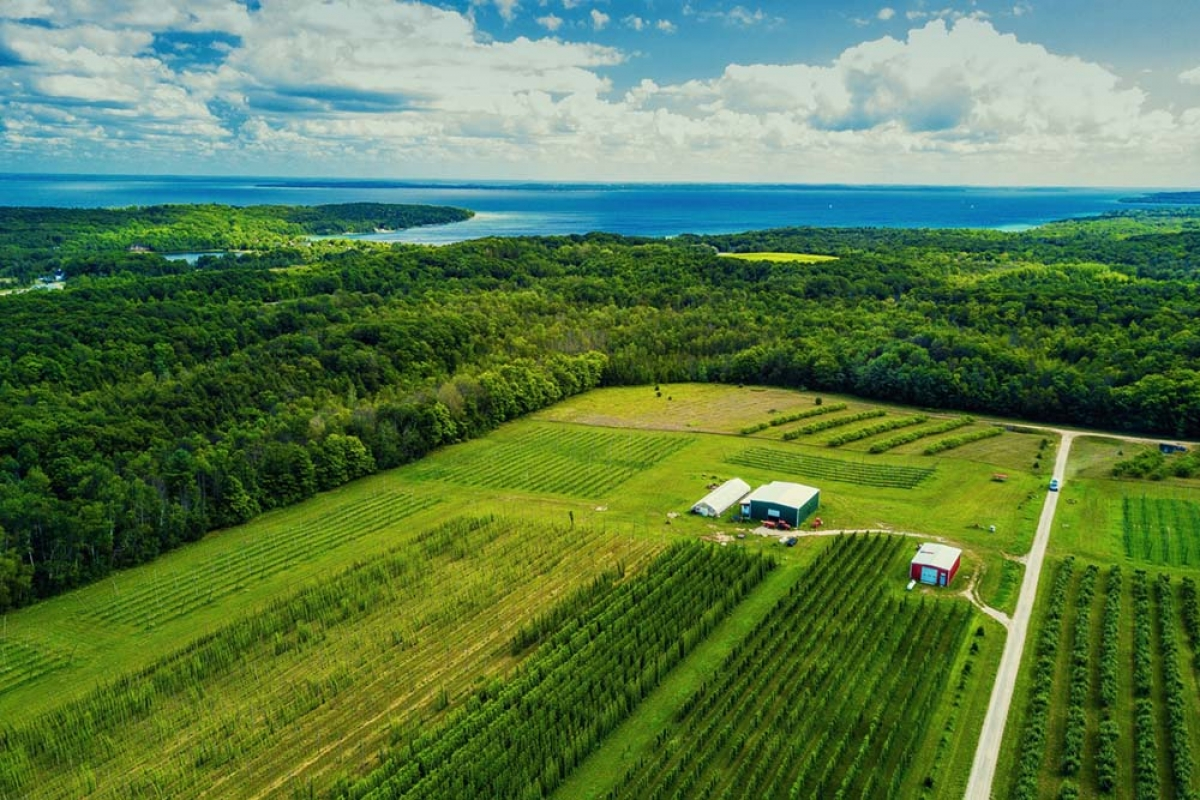 Michigan Hop Alliance grows a range of hop varieties at its Omena-based farm, located on the Leelanau Peninsula in Northern Michigan.