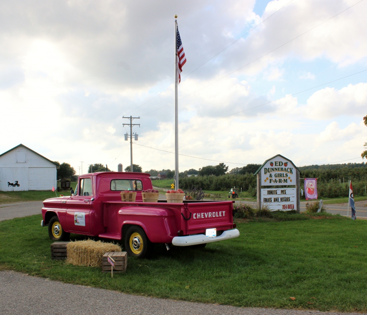 Pending approval of a microbrewery license and small winemaker's license from the Michigan Liquor Control Commission, Ed Dunneback & Girls Farm Market expects to begin brewing by Aug. 1.