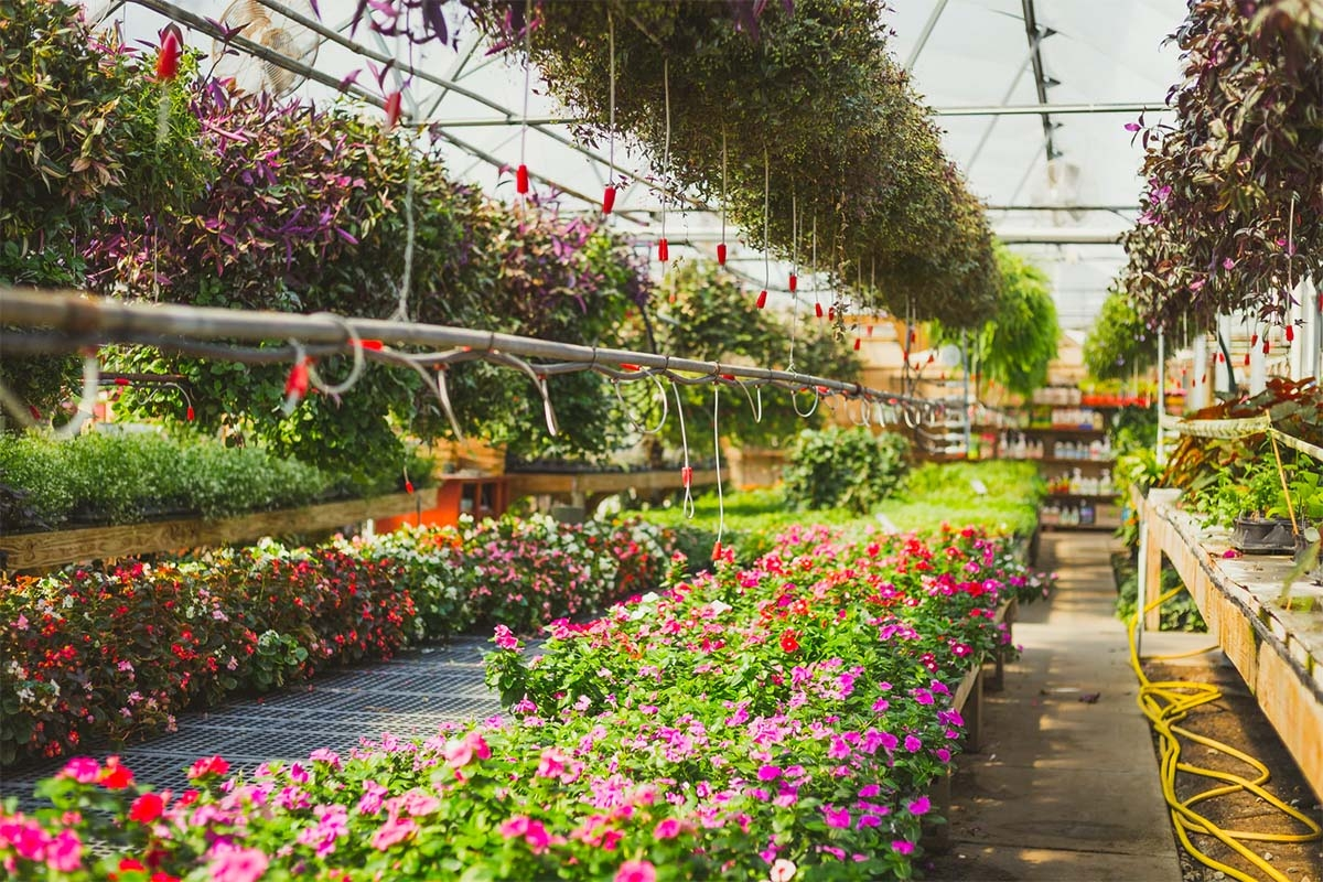 Gardening centers, greenhouses ready to open under modified state order